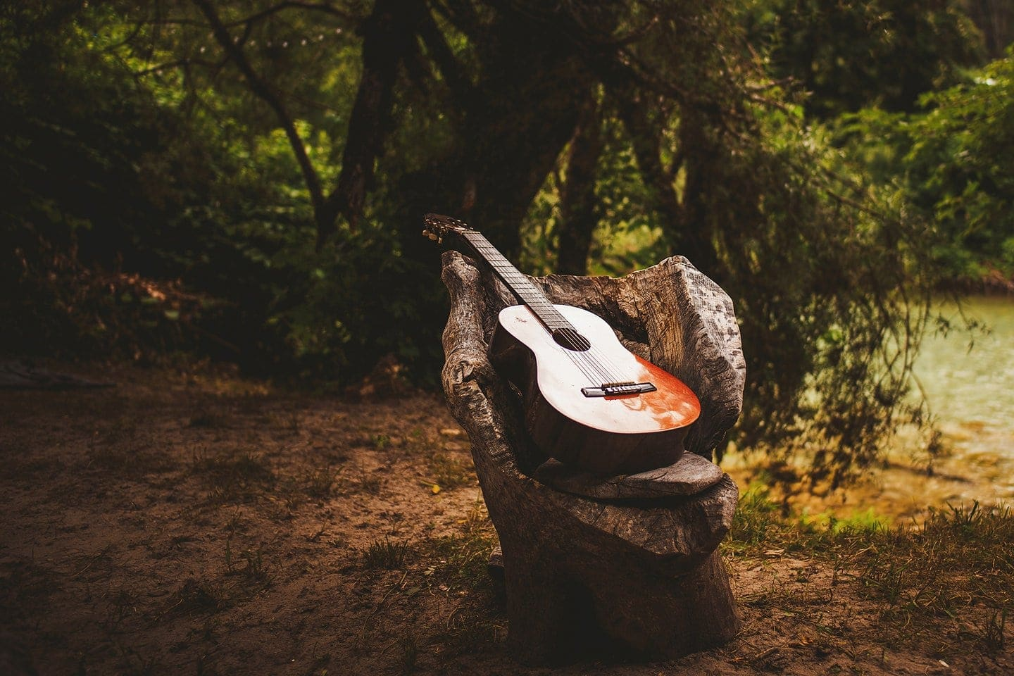the guitare at wedding in the forest